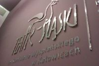 teatr_slaski_pleksi